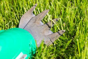 Rasenkantenschere für den Garten