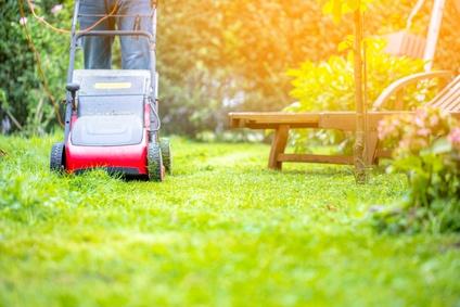 Rasenmäher mit Mulchfunktion