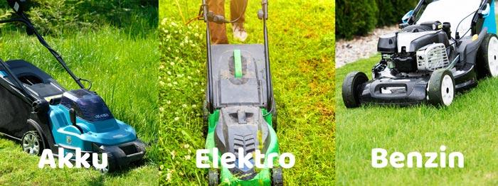 Elektro-, Akku- oder Benzin-Mäher kaufen?