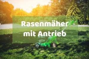 Rasenmäher mit Antrieb kaufen