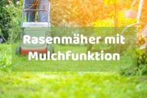 Rasenmäher mit Mulchfunktion kaufen