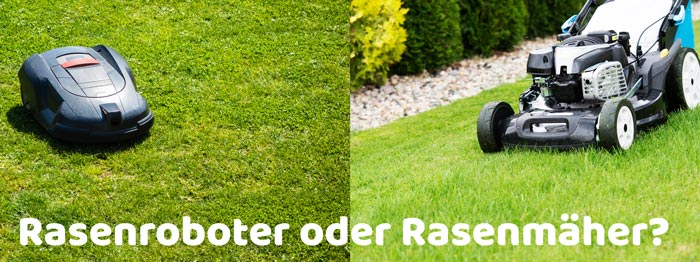 Rasenroboter oder Rasenmäher kaufen