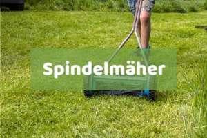 Spindelmäher kaufen